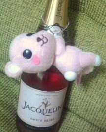 jaco4.jpg