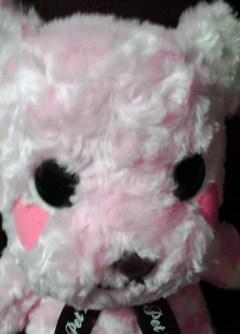 teddy104.jpg